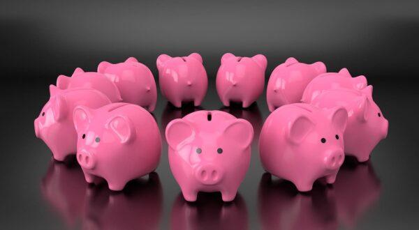 豚の貯金箱が11個