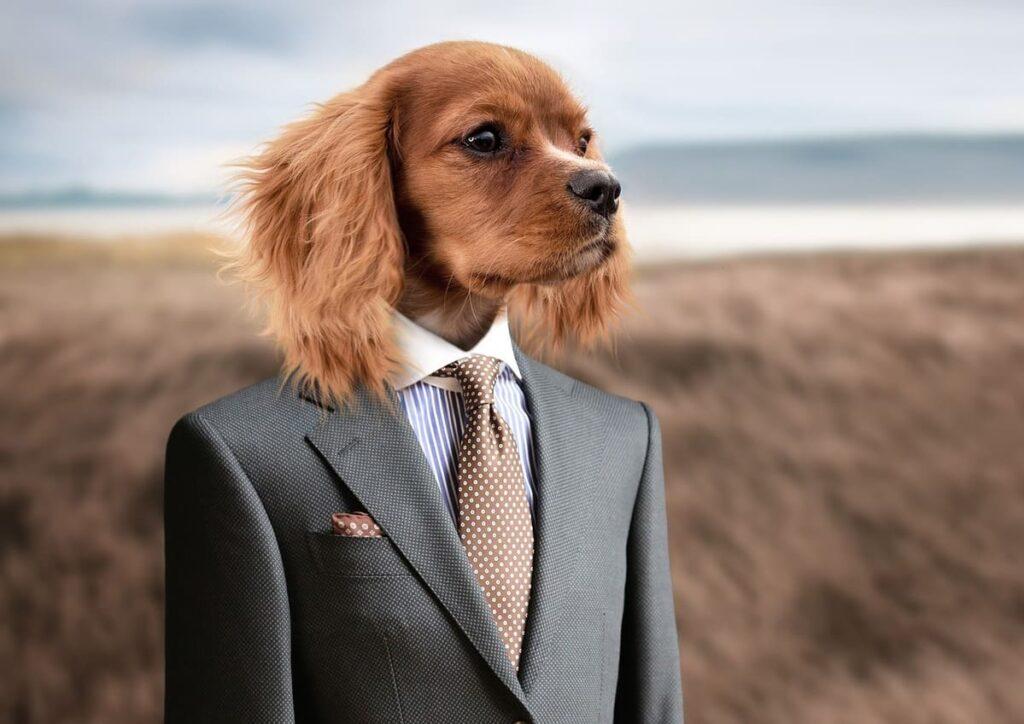 Zoom背景 ビジネスマン
